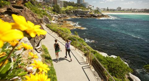C​oastal walk from Coogee to Bondi, Bondi in distance