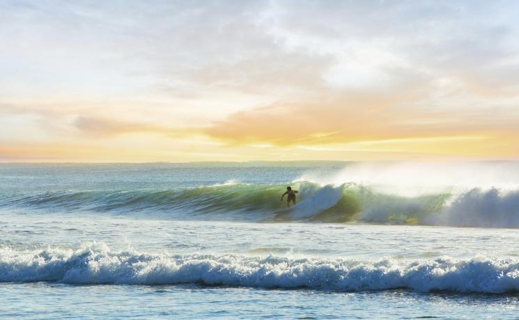 波に乗るサーファーマンリー・ビーチ 、 シドニー